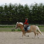 Springdag for ponyrytterne 2015